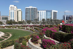 Flowerbeds in the city of Dubai Royalty Free Stock Image