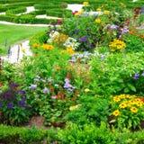 Flowerbeds de florescência fotos de stock