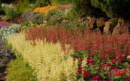 Flowerbeds de florescência fotografia de stock