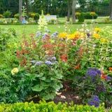 Flowerbeds de florescência fotografia de stock royalty free
