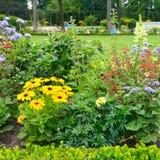 Flowerbeds de florescência foto de stock royalty free
