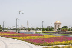 Flowerbeds in Dubai Royalty Free Stock Image