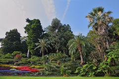 The flowerbeds in an exotic park. Wonderful bright flowerbeds in an exotic park. Lake Como, Villa Carlotta stock photography