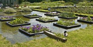 Flowerbeds na água fotos de stock royalty free