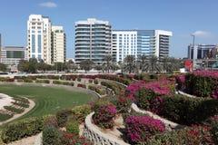 Flowerbeds na cidade de Dubai imagem de stock royalty free