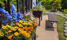 Flowerbeds near building. With stone pathway royalty free stock photo