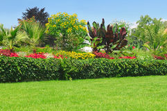 flowerbeds no parque imagem de stock royalty free