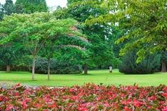 flowerbeds no parque imagens de stock royalty free