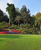 The flowerbeds in the park. Wonderful vibrant flowerbeds in the park. Lake Como, Villa Carlotta royalty free stock photography