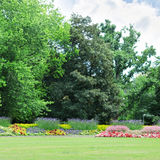 Flowerbeds in the park Stock Image