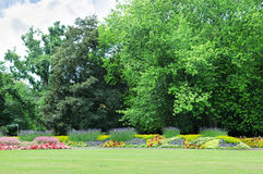 Flowerbeds in the park Royalty Free Stock Images