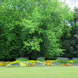 Flowerbeds in the park Stock Photo