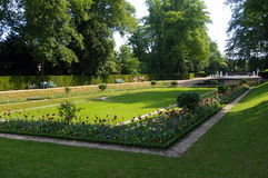 Flowerbeds in park with fountain in background. Scenic view of blooming flowerbeds in park with lake and fountain in background royalty free stock image