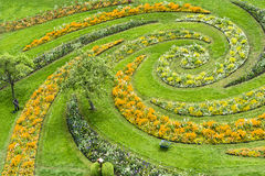 Flowerbeds in Park with gardener - aerial view. Curved flowerbeds with colorful spring flowers stock photo