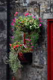 Flowerbox Royalty Free Stock Photos
