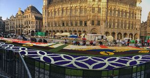 Flowercarpet 2016 Stock Foto's