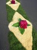 Flowercarpet. Corpus Christi procession Stock Image