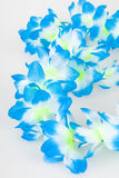 flowerchain Obraz Royalty Free