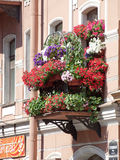 Flowered balconies typical houses Stock Image