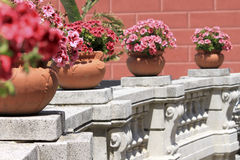 Flowered balcony. A flowered and monumental balcony detail Royalty Free Stock Images