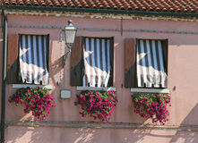 flowered balcony with a window in the house and many flower pots Royalty Free Stock Photography