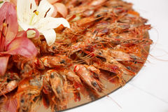 Flowered crabs Royalty Free Stock Image