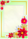 Flowered frame. For greeting, congratulations or felicitation Royalty Free Stock Image