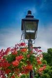 Flowered Lantern. View of hanging flower pot on lantern royalty free stock images