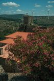 Flowered leafy trees and castle over rocky cliff. On hilly landscape with wind turbines, in a sunny day at Sortelha. One of the most astonishing and well royalty free stock images