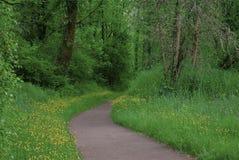 Flowered Path Stock Photos