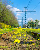 Flowered rails stock photography