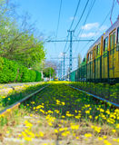 Flowered rails Royalty Free Stock Photo