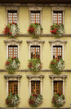 Flowered windows Stock Photos