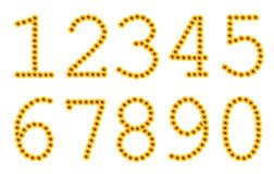 Flowered yellow numbers. Flowered yellow Arabic numerals from zero to nine Royalty Free Stock Photos