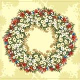 Flowerfield Imágenes de archivo libres de regalías