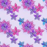 Flowering astra on pattern Stock Photos