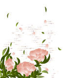 Flowering branch on grunge background. Summer background Royalty Free Stock Images