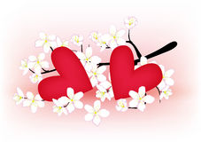 Flowering branch and heart Stock Photo