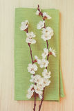 Flowering branch in  napkin Stock Photography