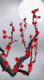 Flowering branch under the moon Royalty Free Stock Images