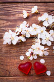 Flowering branch with white delicate flowers on wooden surface. Stock Image
