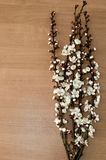 Flowering branch on a wooden table Royalty Free Stock Photo