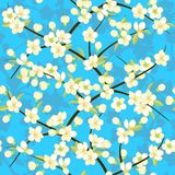 Flowering branches of cherry blossoms on sky background. Vector seamless pattern Royalty Free Stock Photography