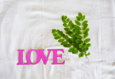 Flowering branches lie next to the word love Royalty Free Stock Images