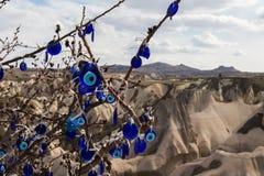Flowering bush, Cappadocia, Turkey Royalty Free Stock Image