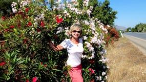 flowering bushes Stock Photo