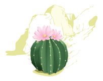 Flowering cactus. Illustration of cactus against the backdrop of mountain scenery Royalty Free Stock Photos