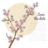 Flowering cherry branch on background of moon. Vintage Stock Images