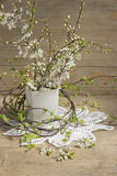 Flowering cherry branches Stock Photo