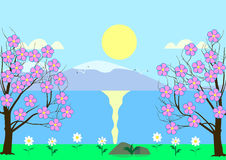 Flowering cherry on the river bank. On a background of mountains, sun, blue sky Royalty Free Stock Photo